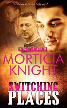 Kiss of Leather Series (8 books) by Morticia Knight