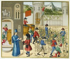 Pierre de Crescens Illustration of growing & manufacturing grapes for wine Medieval Life, Medieval Art, Statues, French Illustration, Research Images, Medieval Paintings, In Vino Veritas, Autumn Garden, Middle Ages