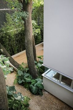 Filters purify rainwater that drains from the roof or through the wood-plastic composite deck. A cistern collects the water for indoor use. Gaudi, Outdoor Spaces, Outdoor Living, Outdoor Trees, Garden Design, House Design, Lawn Sprinklers, Nature View, Wood Patio