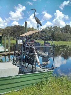 Myakka State Park, Airboat with Great Blue Heron Myakka River State Park, Blue Heron, Venice Beach, Glamping, State Parks, Florida, Spaces, Book, The Florida