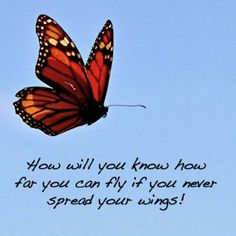 How will you know how far you can fly if you never spread your wings! Healing Quotes, Spiritual Quotes, Positive Quotes, Quotes To Live By, Me Quotes, Motivational Quotes, Inspirational Quotes, Anais Nin, Butterfly Quotes