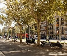 Barcelona's Diagonal - Thoughtful integration of pedestrian walkways, bike paths, car lanes, park benches, and trees