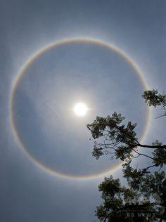 メキシコ・メキシコ市上空で見られた光学現象の「暈(かさ)」(2015年5月21日撮影)。(c)AFP/OMAR TORRES ▼22May2015AFP|UFO襲来?政府の陰謀?太陽囲む光の輪で大騒ぎ メキシコ http://www.afpbb.com/articles/-/3049485 ◆Halo (optical phenomenon) - Wikipedia http://en.wikipedia.org/wiki/Halo_%28optical_phenomenon%29 #Halo #nimbus #icebow #gloriole #antelia #晕 #暈