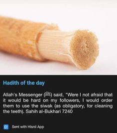 Using siwak ❤️ Prophet Muhammad Quotes, Hadith Quotes, Muslim Quotes, Quran Quotes, Islamic Quotes, Islam Muslim, Islam Quran, Follow The Prophet, Hadith Of The Day