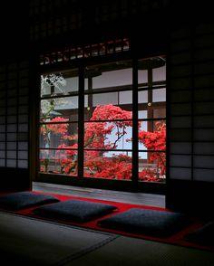 s-ousha:  by junichiro.takikawa