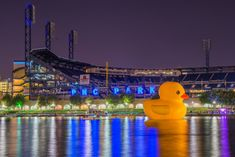 Rubber Duck, Pittsburgh, River, Cool Stuff, Night, City, Middle, Twitter, Unique