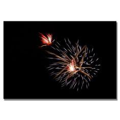 Trademark Fine Art Kurt Shaffer 'Abstract Fireworks 32' Canvas Art