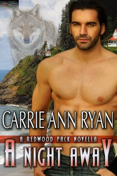 A Night Away by Carrie Ann Ryan http://fateddesires.com/books/a-night-away/