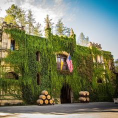 The best Napa Valley wineries to visit feature a tasting room in a cave, artisanal cheese pairings, on-site sommeliers and more