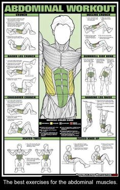 The best exercises for the abdominal muscles. abs workout