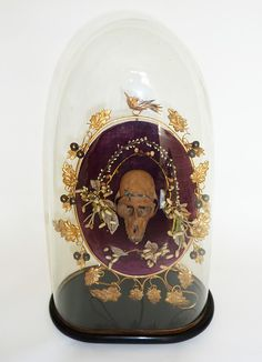 Victorian Glass Dome  Cabinet Of Curiousities by MaisonDogLondon