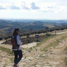 """O Lavandário um campo de lavanda que floresce o ano todo. Na Provence? Na Croácia? Não aqui no Brasil mesmo. Legal né? Corre lá no blog. É só digitar no campo de busca """"Lavandário"""" que o post aparecerá. Ainda não sabe o endereço do blog? O link está no perfil do Instagram! #blogsdeturismo #blogsdeviagem #globetrotter #instabloggers #instatravel #instatrip #quetalviajar #viagem #viajarcorrendo #wanderlust #worldtraveller #olavandario #lavadario #cunha #sp #lavanda #provence"""