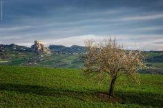 Spring in Sicily, Mussomeli | Paesaggi Photo by Maurizio Di Maria