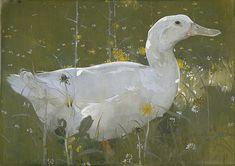 Joseph Crawhall - The White Drake - Joseph Crawhall III - Wikipedia, the free encyclopedia
