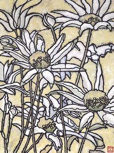 botanicals | pod and pod