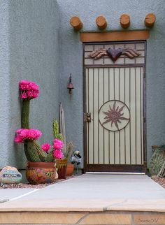 Beautiful cactus flowers in bloom, and a southwestern style entryway. Tucson, Arizona.