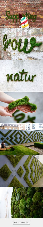 moss graffiti grows on walls by anna garforth