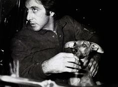 Al Pacino and his dog. www.jrbatalle.com
