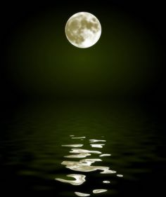 Moon reflected in water