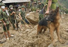 Helping to search for survivors after a mudslide!