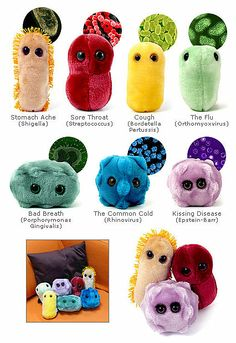 156 Best Giant Microbes images  12c9004e3