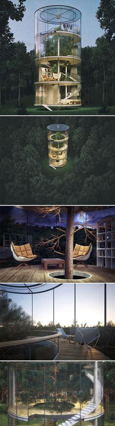 Conceptual tubular #glass #house by Kazakh architect Aibek Almassov wraps around a mature tree