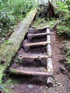 Juan de Fuca Trail information Greatest Adventure, Adventure Time, Backpacking, Camping, Hiking Backpack, Abandoned Houses, Staircases, Garden Bridge, The Great Outdoors