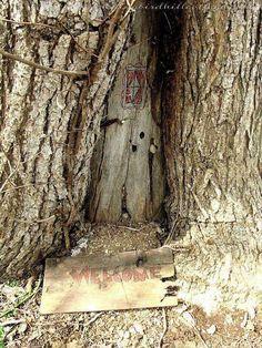 ~~ 'Fairies in the Tree /post Fairy Tree Houses, Fairy Village, Fairy Garden Houses, Fairies Garden, Fairy Garden Doors, Fairy Doors On Trees, Gnome House, Tree Stump, Miniature Fairy Gardens