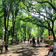 Take a break from the hustle and bustle of the city with a stroll through Central Park and enjoy the beautiful scenic views!