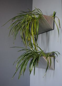 """""""She used sheet metal, which she cut with tin snips and then bent. She created linings from old plastic bags, which hold dirt and water in place for her hardy spider plants."""""""
