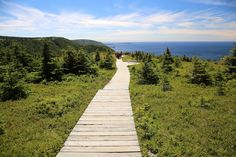 The Skyline Trail boardwalk: Canada's Cape Breton Island: 9 Best Stops While Driving the Cabot Trail in Nova Scotia East Coast Canada, Nova Scotia Travel, Cabot Trail, Atlantic Canada, Canada Travel, Canada Trip, Cape Breton, Great Places, Things To Do