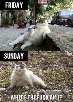 the weekend... lol!