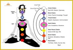 The Chakras of the human body - 7 in numbers - are the centers in our bodies through which the energy flows. 7 Chakras, Chakra Meditation, Chakra Healing, Soul Healing, Meditation Music, How To See Aura, Chakra Chart, Aura Colors, Reiki Energy
