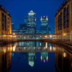 Bird on the river #london - A blue hour shot looking towards @canarywharflondon with One Canada Square all lit up.  The reflection is cool also.