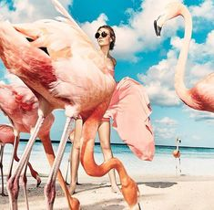 Pink flamingo beach, Nimue Smit poses in Aruba for Vogue Netherlands July 2015 shot by Marc de Groot Foto Fashion, Fashion Shoot, Fashion Art, Editorial Fashion, Vogue Editorial, Summer Editorial, Indian Fashion, Beach Editorial, Fashion Design