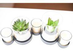 cute plants #ikea Holiday Apartments, Luxury Apartments, Vienna, Ikea, Ethnic Recipes, Plants, Food, Ikea Co, Essen