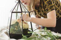 Thanksgiving Terrarium Centerpiece How-To |CB2 Blog