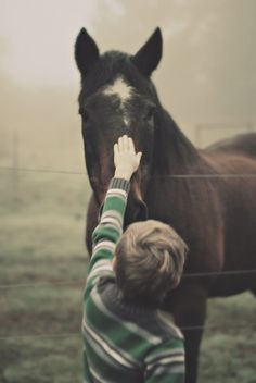 Horses. Losing them will break your heart, but having them will make it.