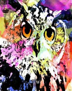 Image result for Owl Drawings Colorful Art