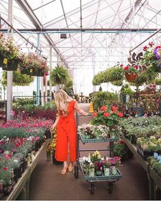 Matching your dress to your blooms is always a good idea Classy Outfits, Garden Projects, Spring Fashion, Jumpsuit, Bloom, Style Inspiration, World, My Style, Pretty