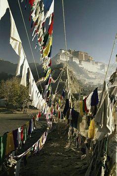 En: Prayer flags near the Potala Palace in Lhassa. Fr : Drapeaux à prière près du Palais du Potala à Lhassa.  En: Built by the 5th Dalaï Lama, Lobsang Gyatso (1617-1682), the palace was notably the main seat of the dalaï lamas until the 14th dalaï-lama.  Fr : Construit par le 5e dalaï-lama, Lobsang Gyatso (1617-1682), le palais fut notamment le lieu de résidence principal des dalaï-lamas successifs, jusqu'au 14e dalaï-lama.  #Tibet