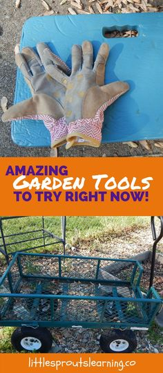 Is there a garden chore you just hate? What is the best way to get through it? For me, it's having the right garden tools for the right job!