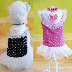 Lovely Pet Puppy Apparel Lace Vest Skirt Polka Dots Bow Doggy Cat Tutu Dress U99 #Unbranded