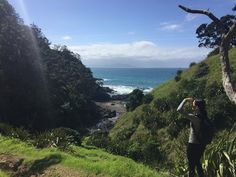 I don't ask for much in a short weekend getaway - sort me out with some bracing walks, a bit of art, stunning scenery, a few oysters, leaping dolphins and plenty of R and R and I'm - New Zealand Herald