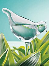 Bird Plant Feeders - Glass Plant Feeders Water Plants while Traveling | Solutions