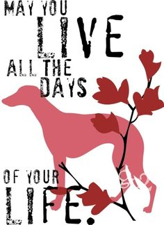 Whippet Dog Art Print Inspirational Dog Print by GoingPlaces2, $14.00