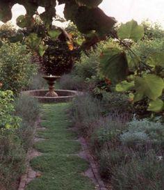 Chamomile plants 25 plants for 50 plants for 100 plants for Herb Garden, Lawn And Garden, Garden Paths, Beautiful Wife, Beautiful Homes, Chamomile Lawn, Path Edging, Garden Shower, Vintage Picture Frames