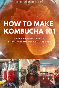 How to Make Kombucha Brewing Basics for the Best Booch Ever Kombucha is a refreshing, tangy, healthy fermented beverage that is easy and affordable to make at home! Come learn everything you need to know to start brewing kombucha. We have been brewing Make Your Own Kombucha, How To Brew Kombucha, Kombucha Recipe, Kombucha Tea, Kombucha Brewing, Kombucha Flavors, Healthy Juices, Healthy Drinks, Healthy Food
