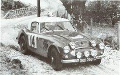 1000 images about austin healey on pinterest rally car. Black Bedroom Furniture Sets. Home Design Ideas