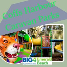 Reasons For Visiting The Caravan Park In Coffs Harbour Caravan, Park, Beach, Travel, Viajes, The Beach, Parks, Beaches, Destinations